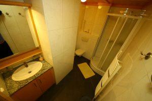 Waschtisch, Dusche und WC